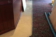 carpet-