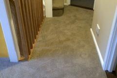 carpet-7