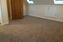 carpet12